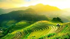 راهنمای سفر به بالی با تورهای متنوع